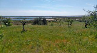 Farm 2 is located in the natural park of Ria Formosa.