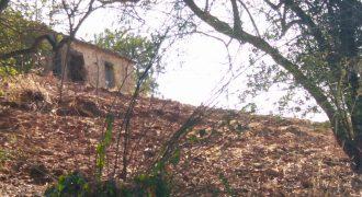 Terreno com ruína em zona calma campestre na serra de Tavira