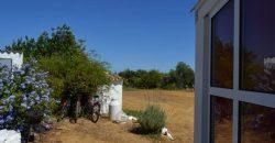 Renovierter Bauernhof in der Nähe von Tavira