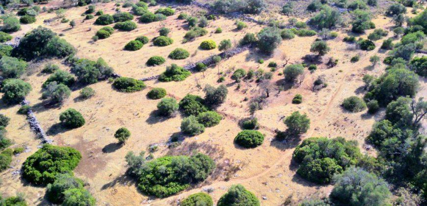 Rustikales Land mit 1ha in der Nähe von Moncarapacho